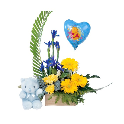 Newborn baby boy - Flower Basket, Soft Toy and Balloon Gift